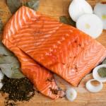 salmon_2_s